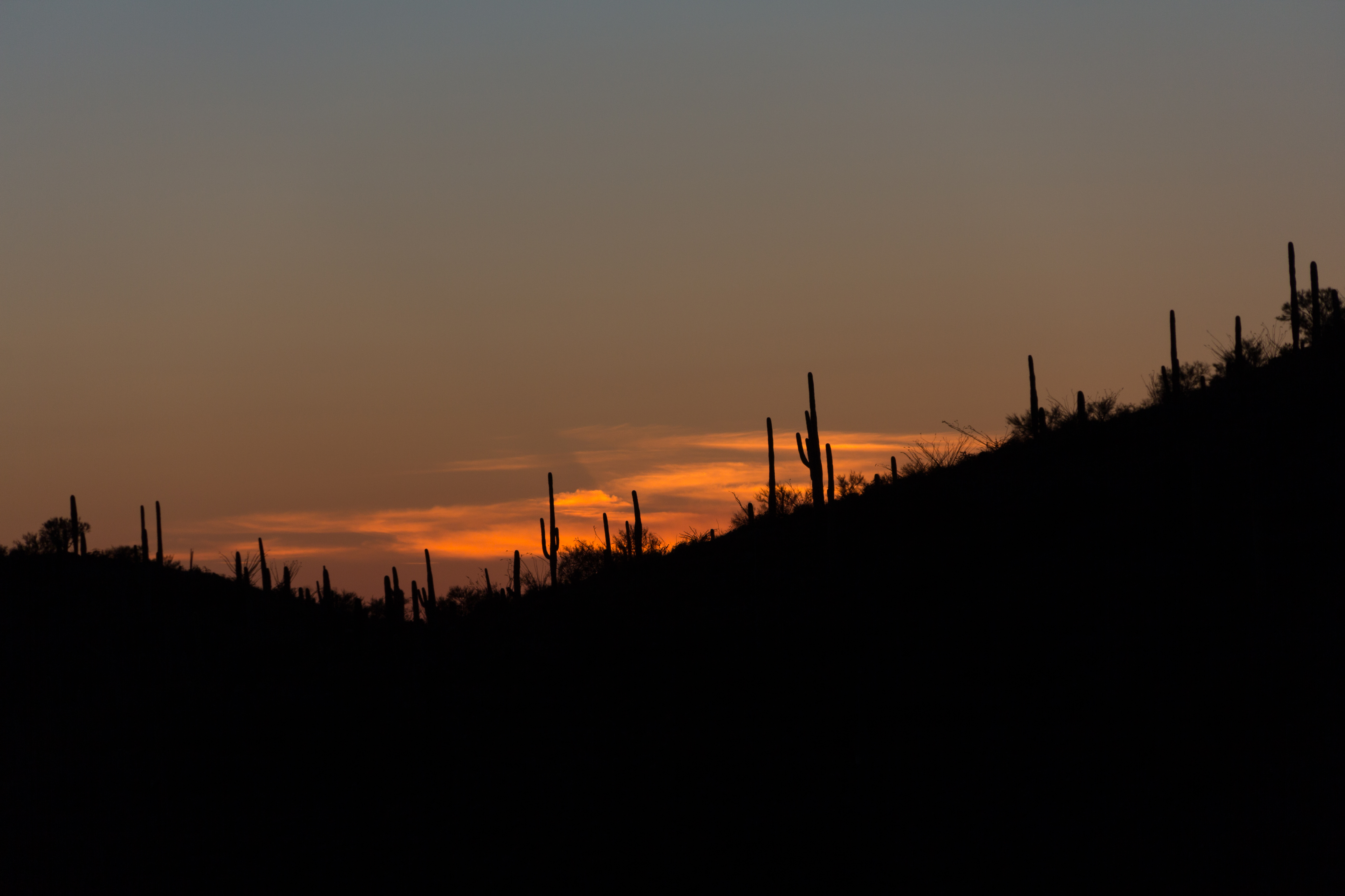 KingCanyon-Sunset-03242015-1